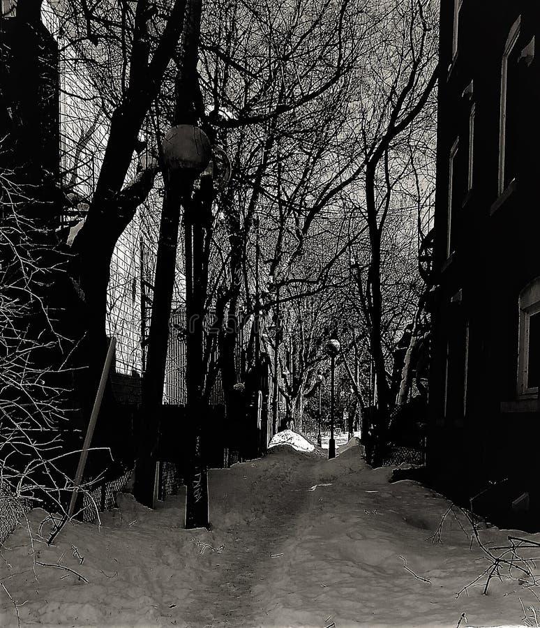 Hiver Ruelle Montreal stockbild