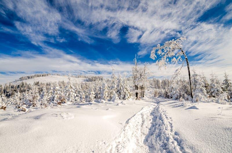 Hiver sur des montagnes de Beskidy photographie stock