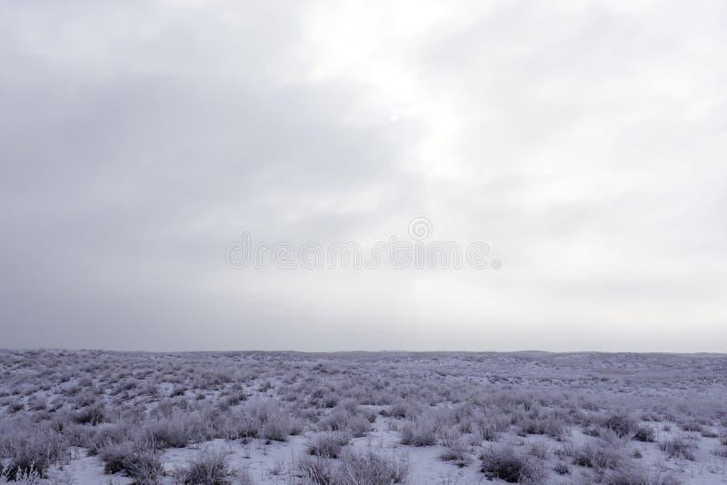 hivernage Vue d'hiver chez Balkhash image libre de droits