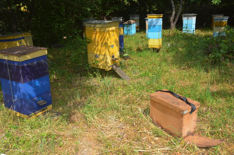 Hives in an apiary with bees. Save the bees from extinction of honey bee colonies. Honey Bee Colonies Beekeeping Farm in Ukraine royalty free stock photography