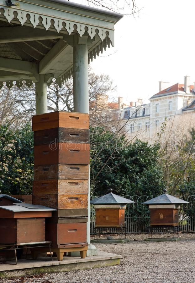 Hives in the city. Some hives in the city Paris France royalty free stock images
