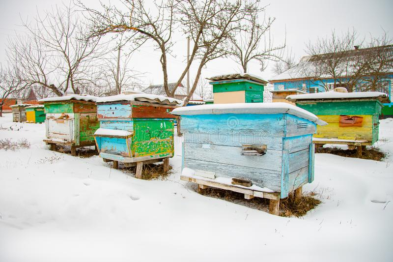Hives close-up in a winter garden with snow cover on a sunny day royalty free stock photos