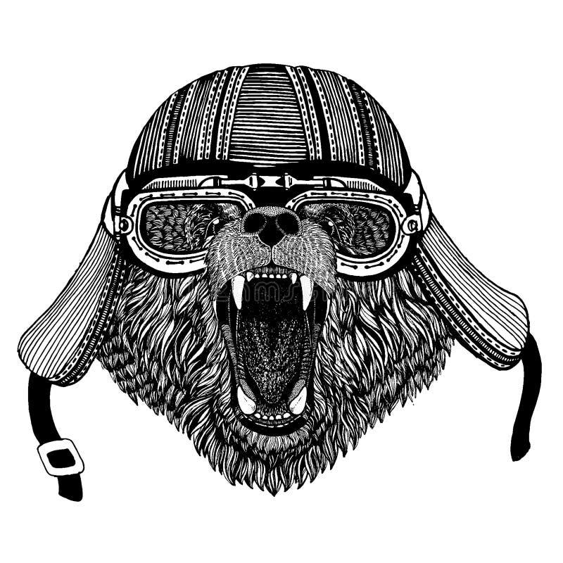 Hjälm för motorcykel för löst björncyklistdjur bärande r vektor illustrationer