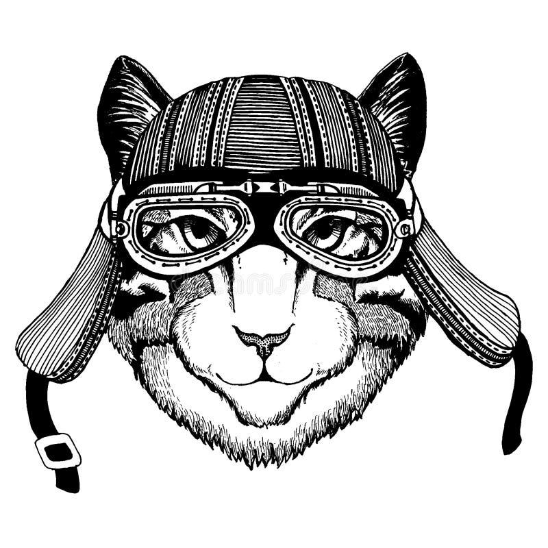 Hjälm för motorcykel för löst kattcyklistdjur bärande r royaltyfri illustrationer