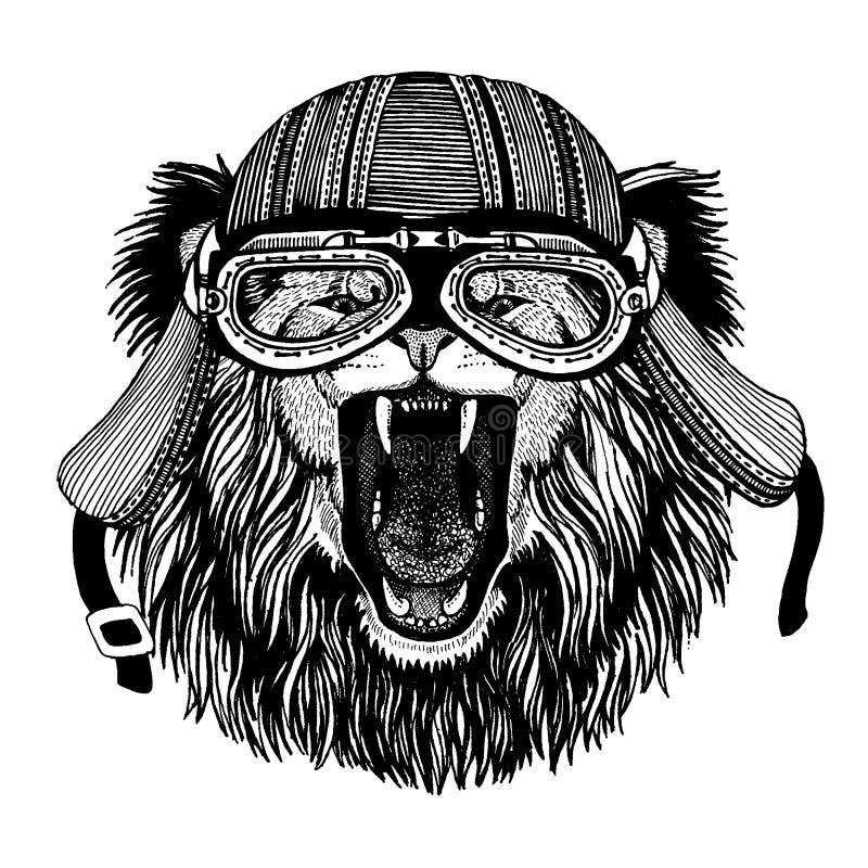 Hjälm för motorcykel för löst lejoncyklistdjur bärande r royaltyfri illustrationer