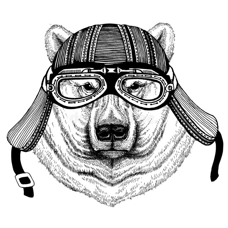 Hjälm för motorcykel för stort vitt löst cyklistdjur för isbjörn bärande r stock illustrationer