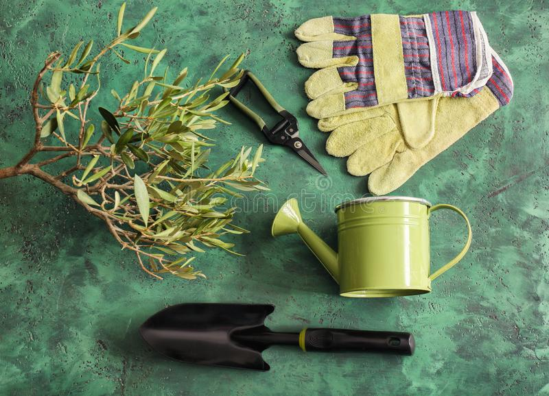 Hjälpmedel för grön växt och arbeta i trädgårdenpå färg texturerad bakgrund arkivfoton