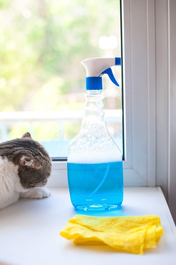 Hjälpmedel för tvättande fönster som är skottsäkert Bära ut hem- kontroller, tvättar handen de smutsiga fönstren med en trasa och arkivfoton