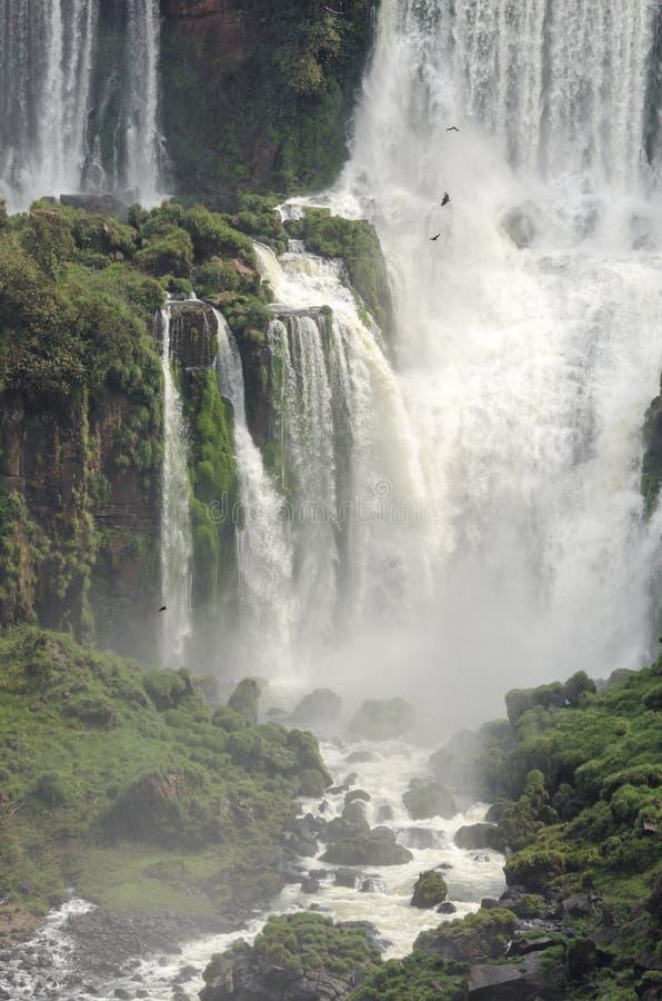 Hjälpmedel för vattenfallet Iguacuwalls royaltyfri bild