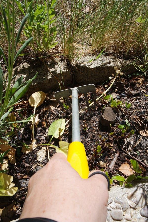 Hjälpmedel i trädgården arkivfoto