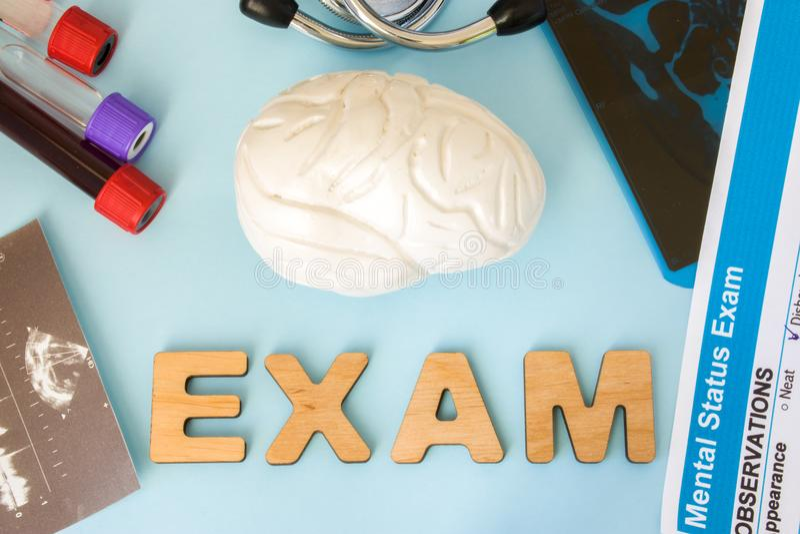 Hjärna eller centralt och perifer nervsystemundersöknings-, prov- och diagnostiktillvägagångssättbegrepp Anatomimodell av hjärnsu arkivfoto