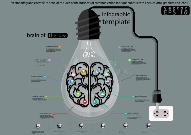 Hjärna för vektorInfographic mall av idén av affären av kommunikationen för Aquaframgång med linjer, färgrika diagram och royaltyfri illustrationer