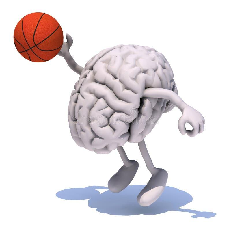 Hjärna med hans armar och ben som spelar basket stock illustrationer