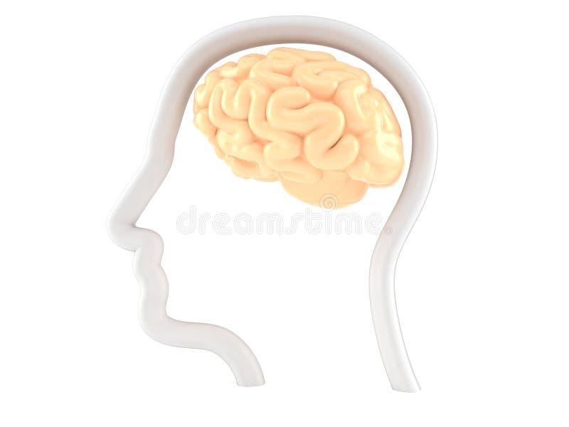 Hjärna med profilframsidan royaltyfri illustrationer