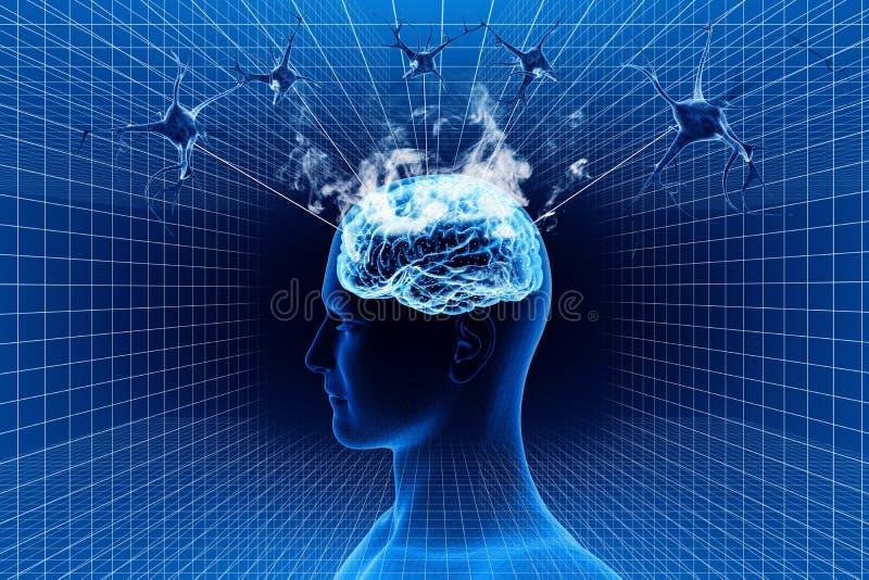 Hjärna och neuron royaltyfri illustrationer