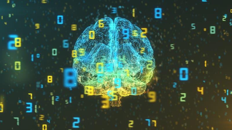 Hjärna och nummer - stor data och statistik - främre sikt royaltyfri illustrationer