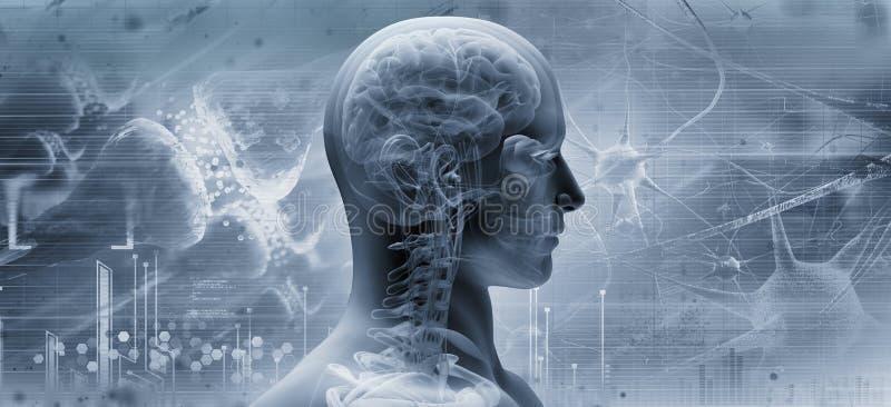 Hjärna tänkande begrepp royaltyfri illustrationer
