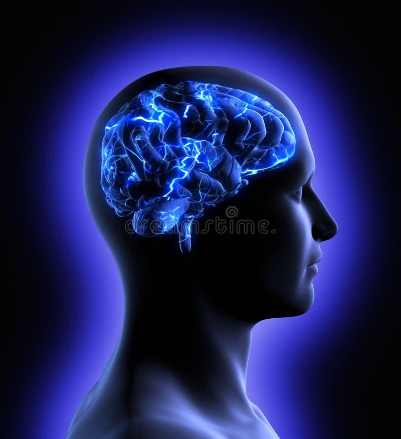 Hjärnaktivitet stock illustrationer