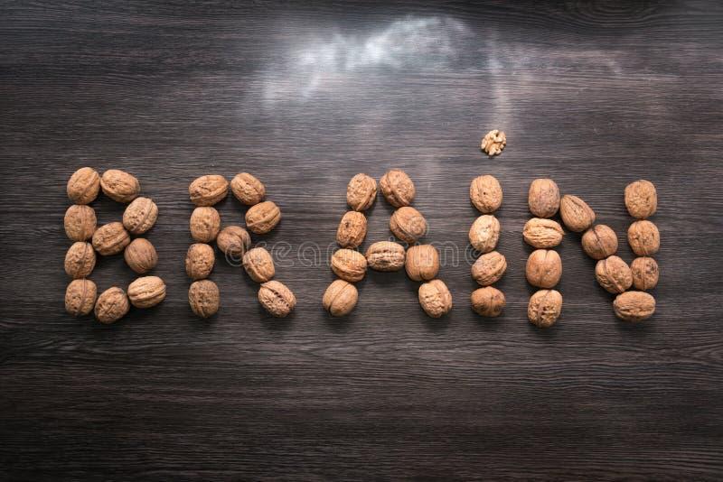 Hjärnbokstavstecken som göras med valnötter mot träbakgrund Stormljus Hjärna och exponeringar Hjärnhälsa royaltyfri foto