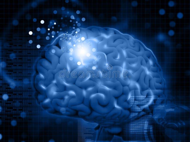 Hjärnfunktioner royaltyfri illustrationer