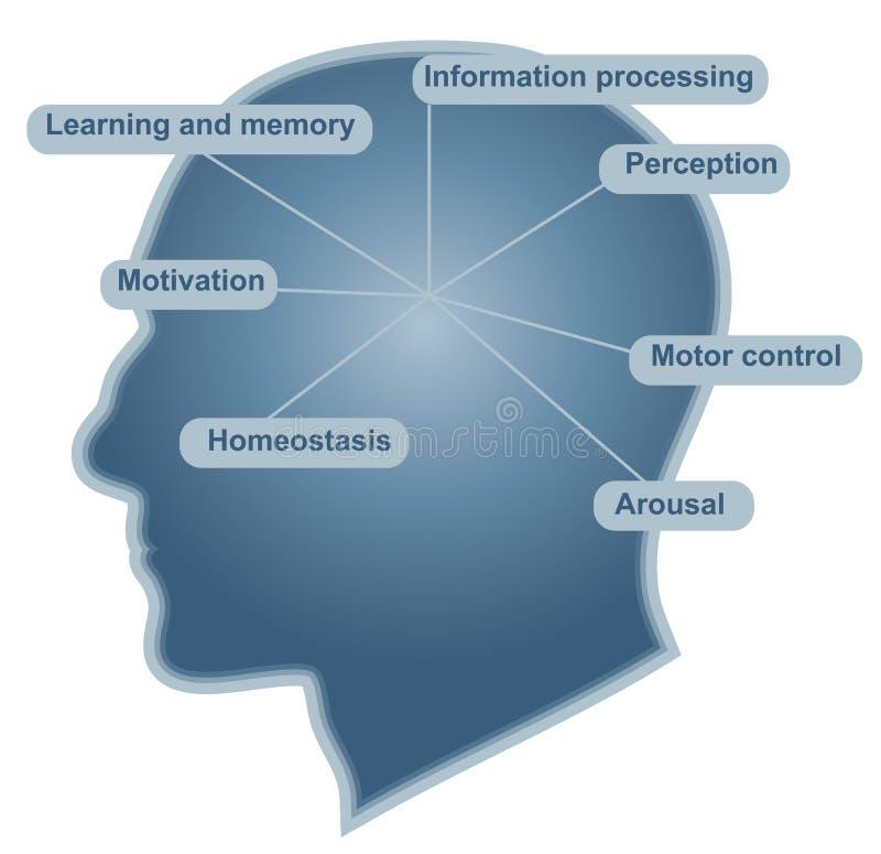 hjärnfunktionsströmförsörjning stock illustrationer