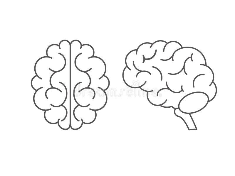 Hjärnsymbolsuppsättning i plan stil Sida och b?sta sikt ocks? vektor f?r coreldrawillustration stock illustrationer