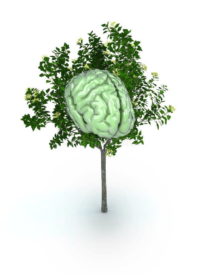 hjärntree stock illustrationer