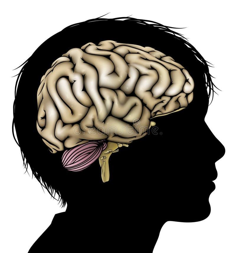 Hjärnutvecklingsbegrepp royaltyfri illustrationer