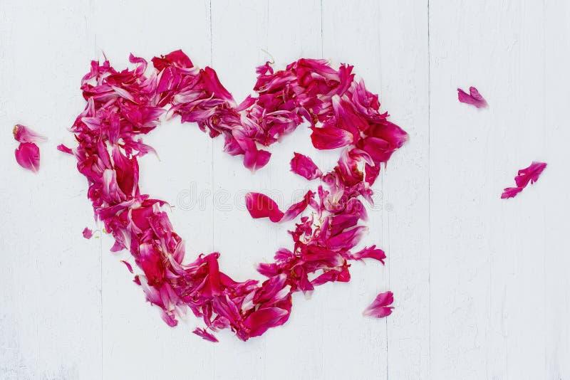 Hjärta av rosa kronblad royaltyfria foton