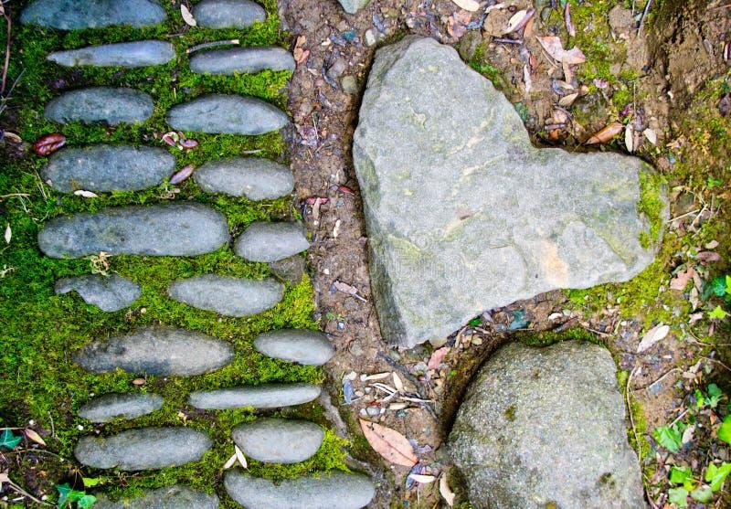 Hjärta av stenen längs skogbanan royaltyfri fotografi