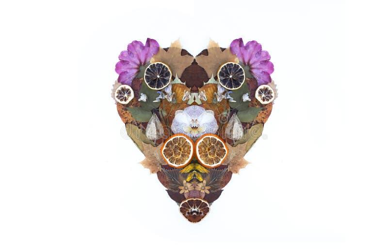Hjärta av torra blommor, apelsin- och grapefruktskivor och höstsidor dekorativ sammansättning Höstdesignbeståndsdel royaltyfria bilder
