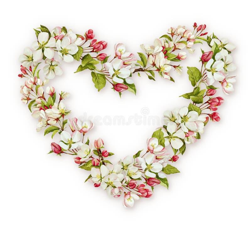 Hjärta för blomning för vårvattenfärgäpple royaltyfria bilder