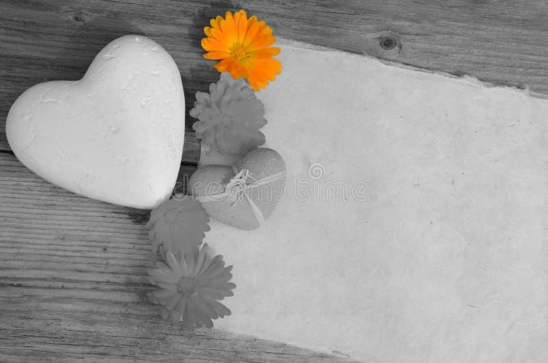 Hjärta för tomt papper fotografering för bildbyråer
