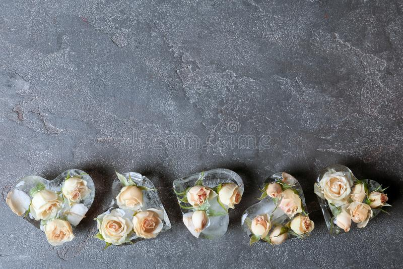 Hjärta formade iskuber med rosor på grå bakgrund royaltyfri bild