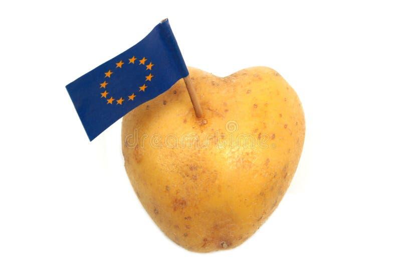 Hjärta formade potatisen med flaggan av europeisk union för E. - arkivfoton