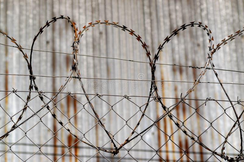Hjärta formade taggtråd mot ett lager royaltyfri fotografi