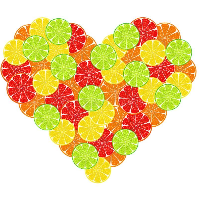 Hjärta från citrus skivabakgrund royaltyfri bild