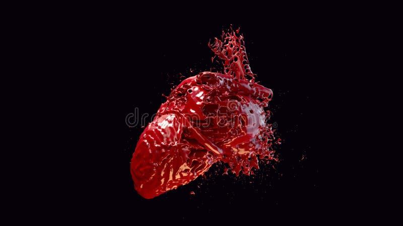 Hjärta fyllt blod royaltyfria bilder