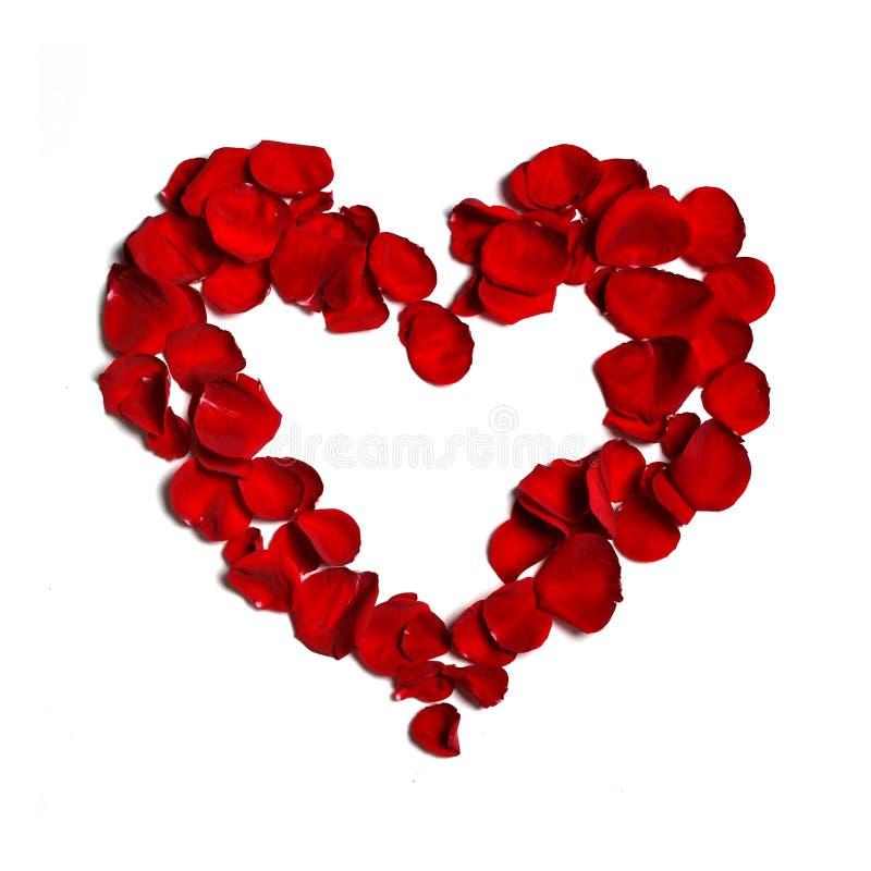 hjärta gjorde petals royaltyfria foton