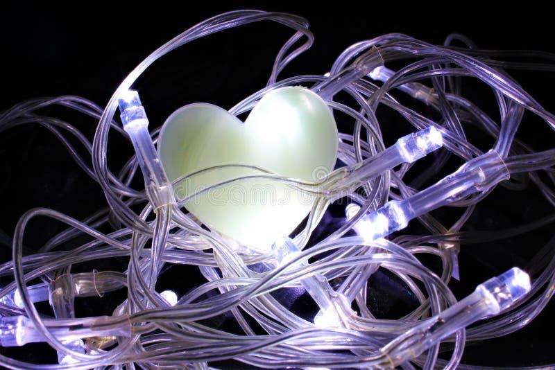 Hjärta i ett rede av felika ljus royaltyfria foton