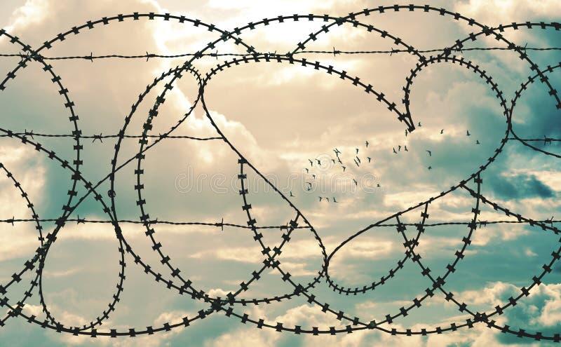 Hjärta i taggtrådramflock av fåglar i cloudscapebakgrund royaltyfri bild
