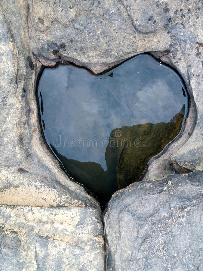 Hjärta i vagga arkivfoton