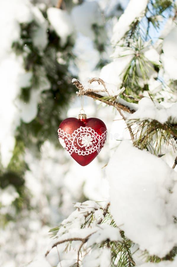 Hjärta leker med snör åt på en sörjafilial i den snöig skogen arkivbild