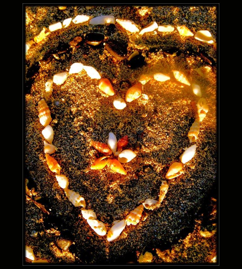 Hjärta med skal på stranden arkivfoton