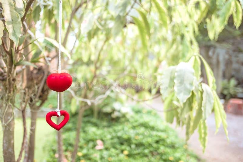 Hjärta och träd i trädgård arkivfoto