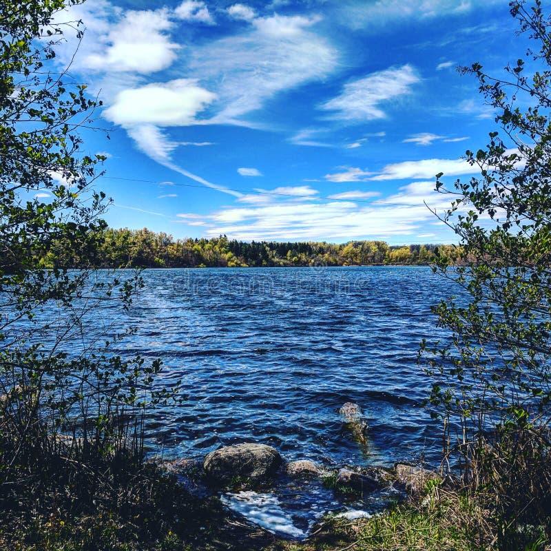 Hjärta sjö Brampton Ontario royaltyfria foton