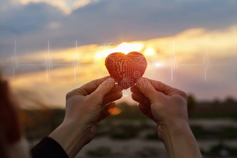 Hjärta som är konstgjord i händer arkivfoton
