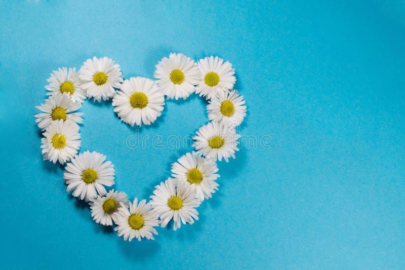 Hjärta som göras av vita tusenskönor arkivbild