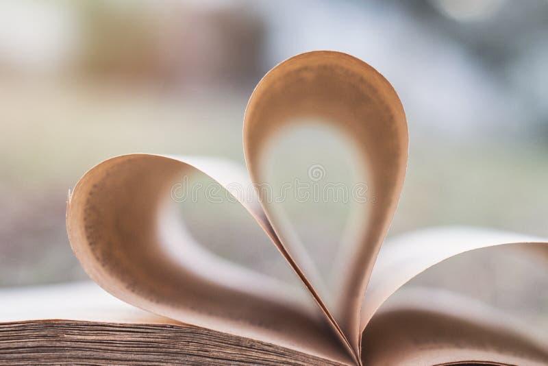 Hjärtadiagram för gamla böcker i natur fotografering för bildbyråer