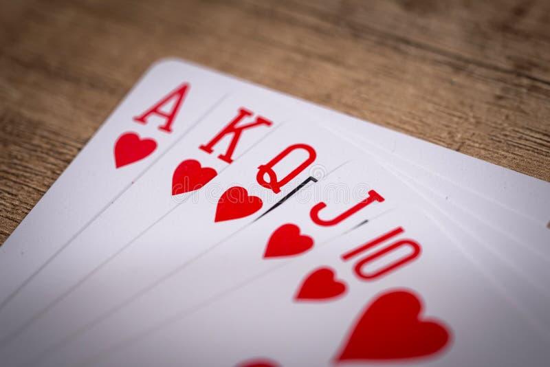 Hjärtadräkt som spelar kort royaltyfri foto